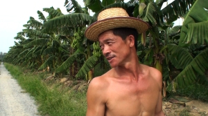 """Chinese Banana Farmer"""
